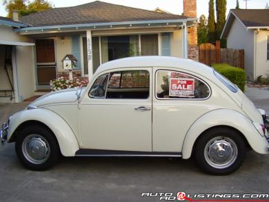 beetle 1967 volkswagen beetle. Black Bedroom Furniture Sets. Home Design Ideas
